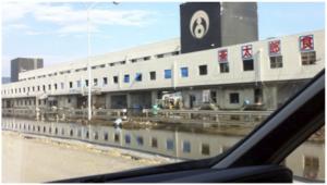 魚町にある石巻漁港の市場。地盤沈下によって1階部分が水没している
