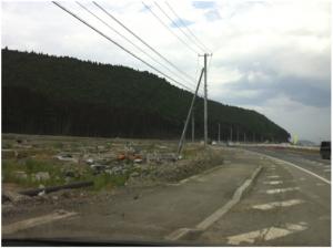 南三陸町。津波によって立ち枯れた林を縁取る木。電信柱が傾き、建物は基礎部分が残っているだけで形が無い